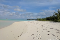 Fyre Festival Site Survey 2: Coco Plum Beach